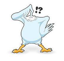 218px-headlesschicken